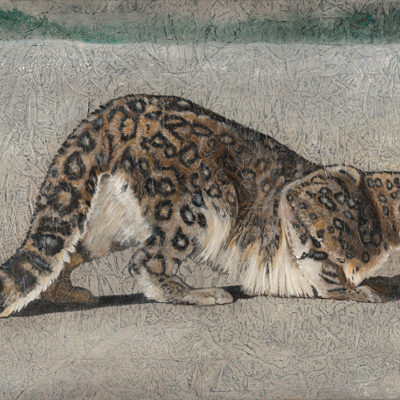 "Return of the Snow Leopard | 36"" x 58"" earth pigments, encaustic, oil on canvas"